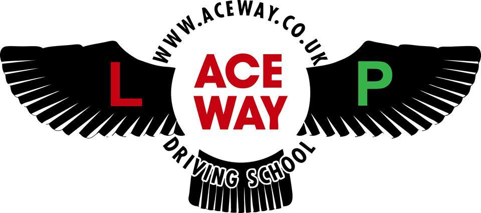 Aceway Driving Instructor Training