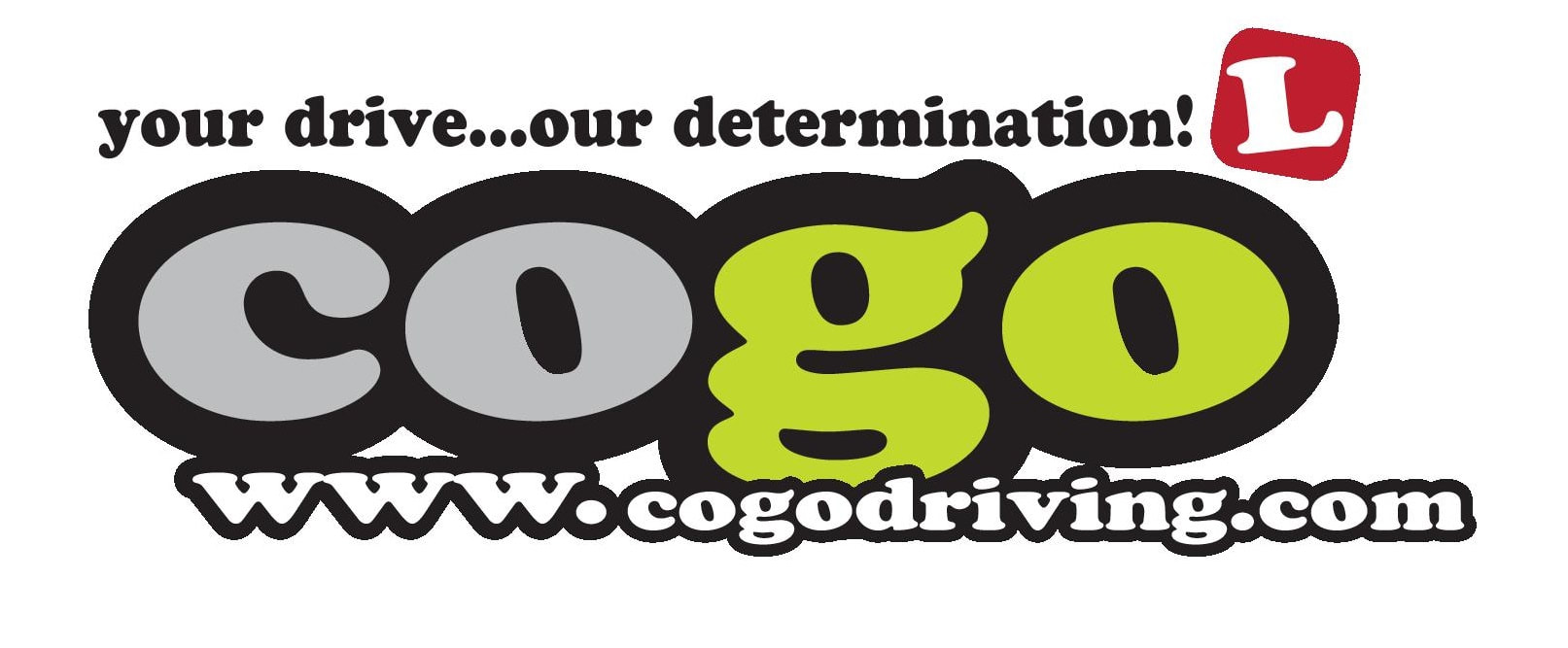 Cogo Driving Instructor Training